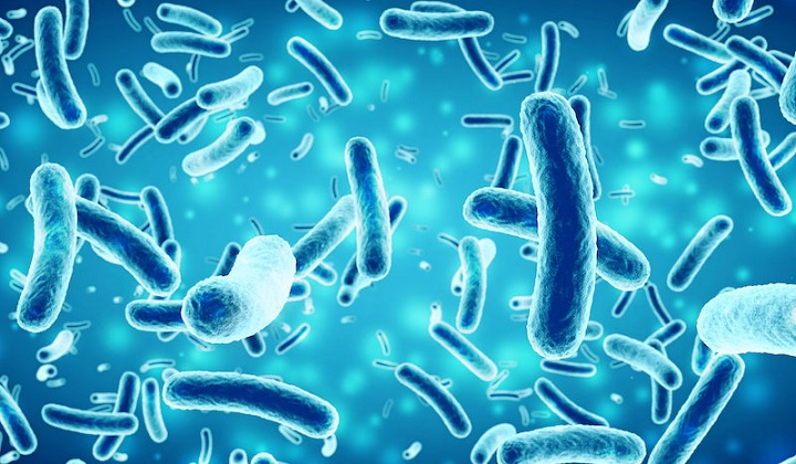 Driving bacteria to produce potential antibiotic, antiparasitic compounds