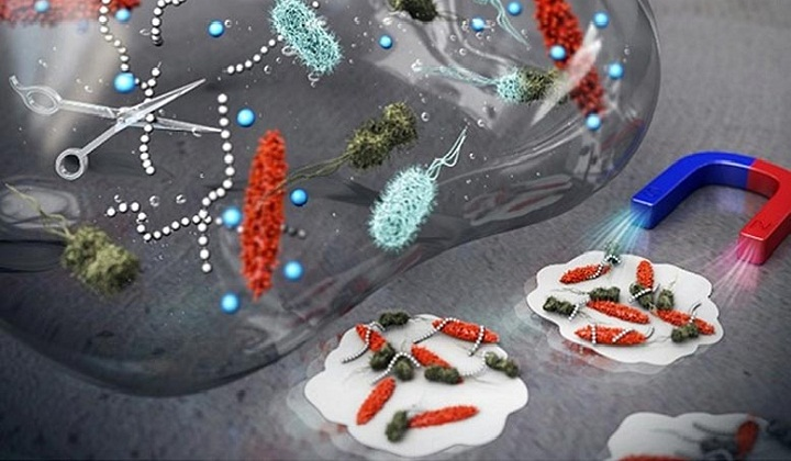 Nanocrystals with Unique Surface Texture That Eradicates Bacteria Biofilm