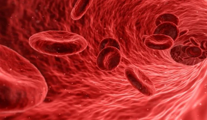 Taking New Steps with Artificial Platelets